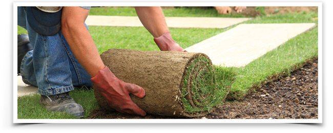 How To Hire The Right Landscape Contractor St Louis