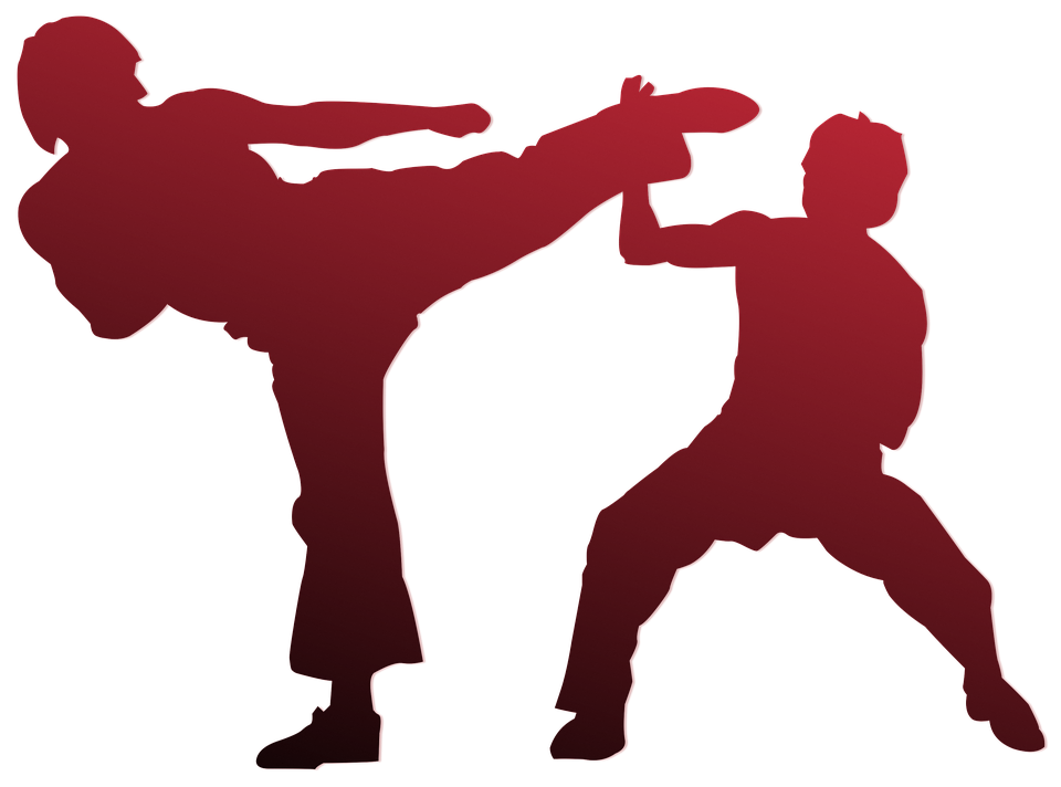 Sydney Martial Arts – Sports, Self-defense And Development