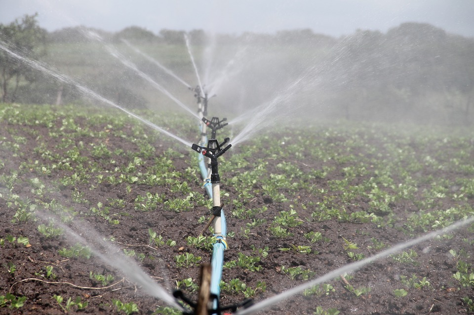 Top 4 Irrigation Installation Ideas That Are Likely To Bring You Results In Perth
