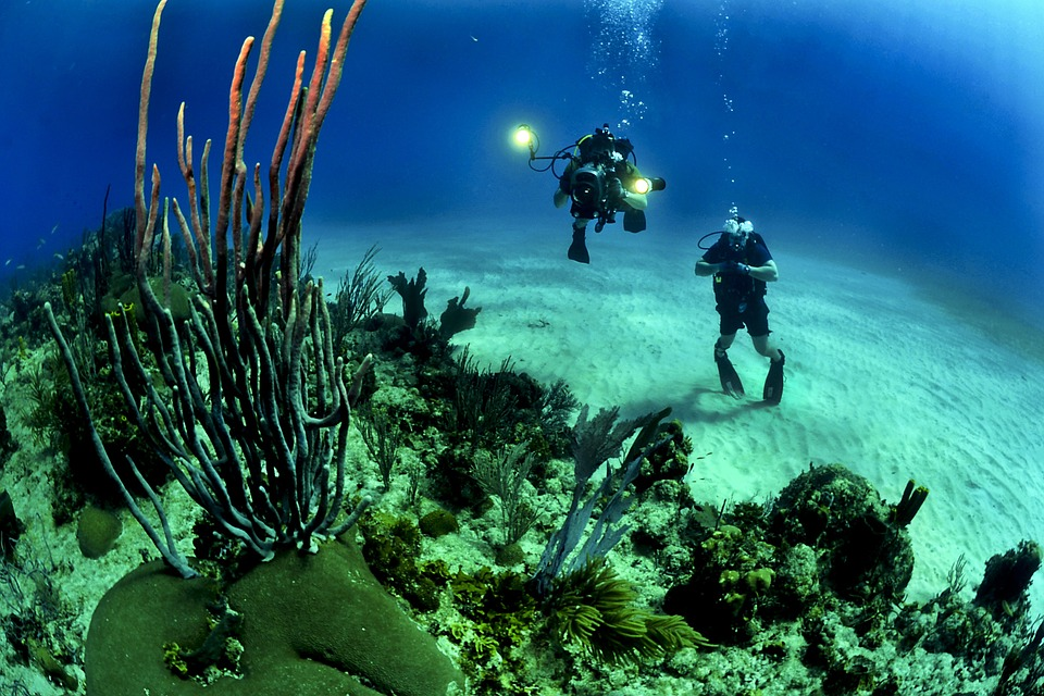 Consider Dive Instructor Courses