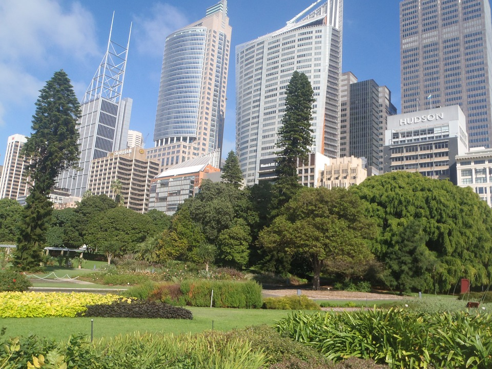 Qualities To Look For In A Good Sydney Tour Company