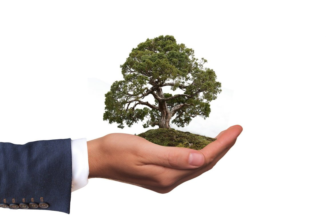 Green Reasons To Use Eco Friendly Promotional Products