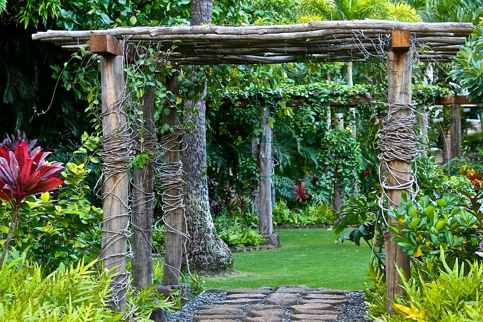 Great Design Ideas For Your Backyard