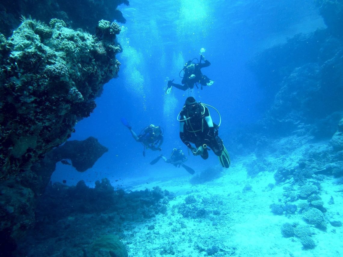 Padi Dive Instructor – How To Become An Instructor?