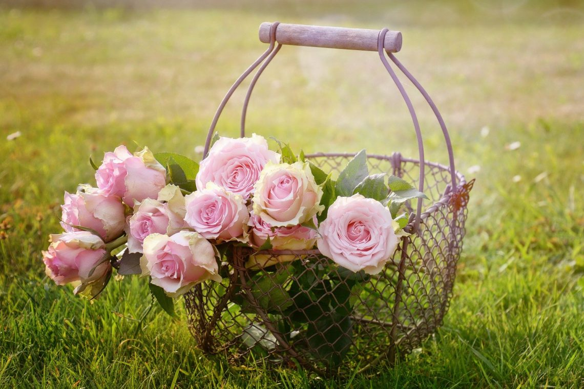 Types Of Flowers In Kalgoorlie To Buy