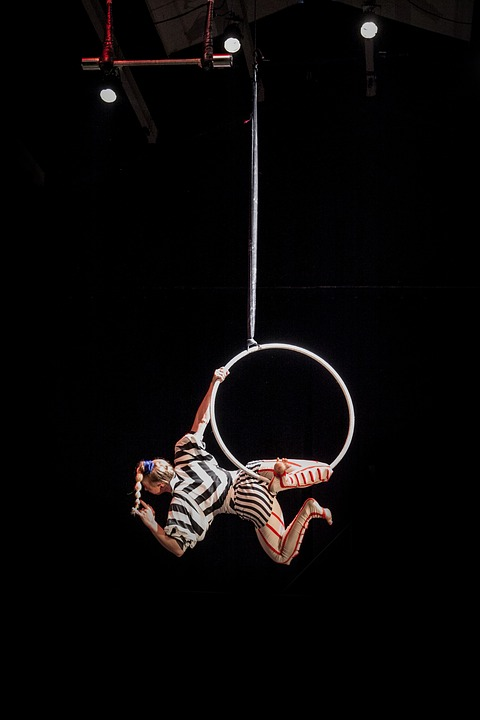 Learn About Aerial Hoop Lessons Sydney