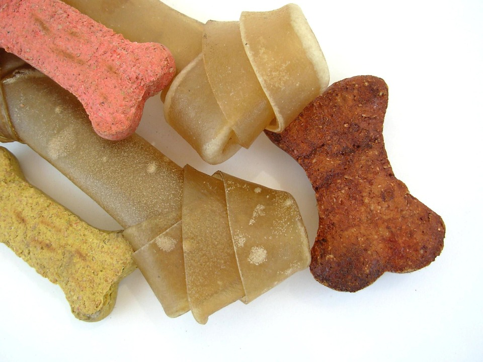 Australian Dog Treats – Meal Options For Your Pet
