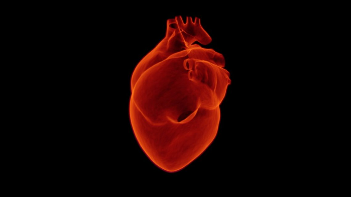 Tips For Finding A Good Sydney City Cardiologist