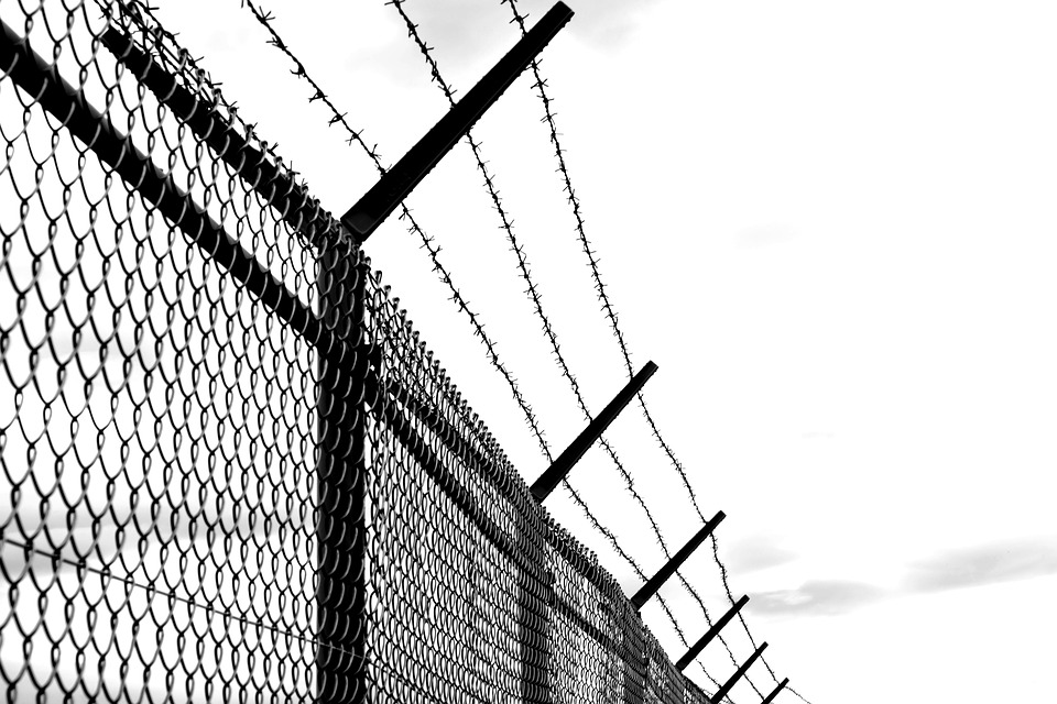 Things To Know About Fencing Salamander Bay Services