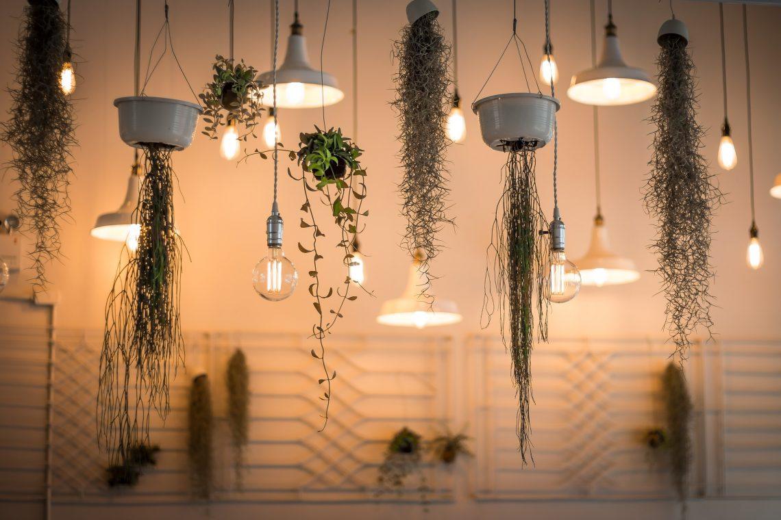 Tips On Choosing The Best CLA Lighting