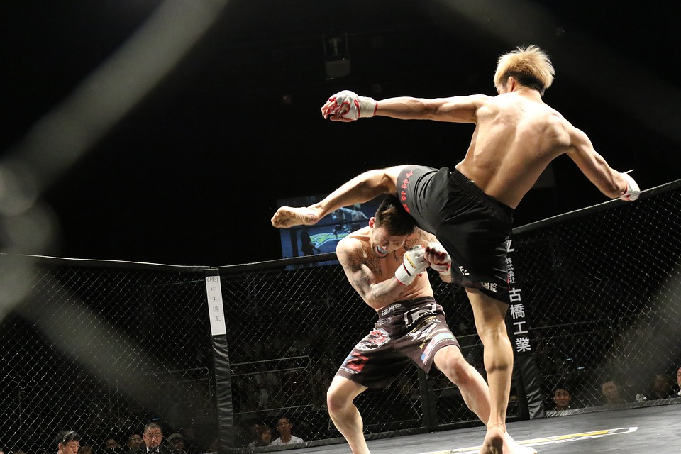 MMA Shorts: Personalized For You